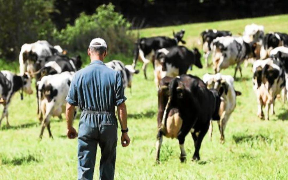 Accord des Vingt-Sept sur la nouvelle politique agricole commune de l'UE