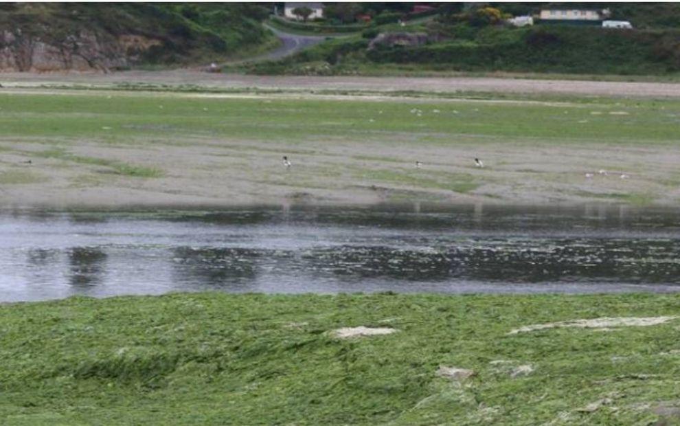 Environnement : le modèle agricole breton en question