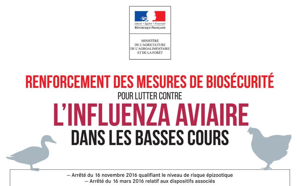 Influenza aviaire, renforcement des mesures de sécurité