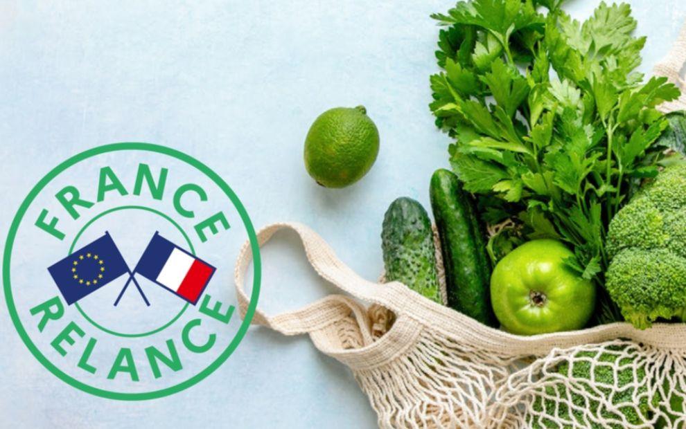 Plan France Relance : les premiers dispositifs du volet agriculture et alimentation sont lancés