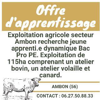 Apprentissage exploitation agricole