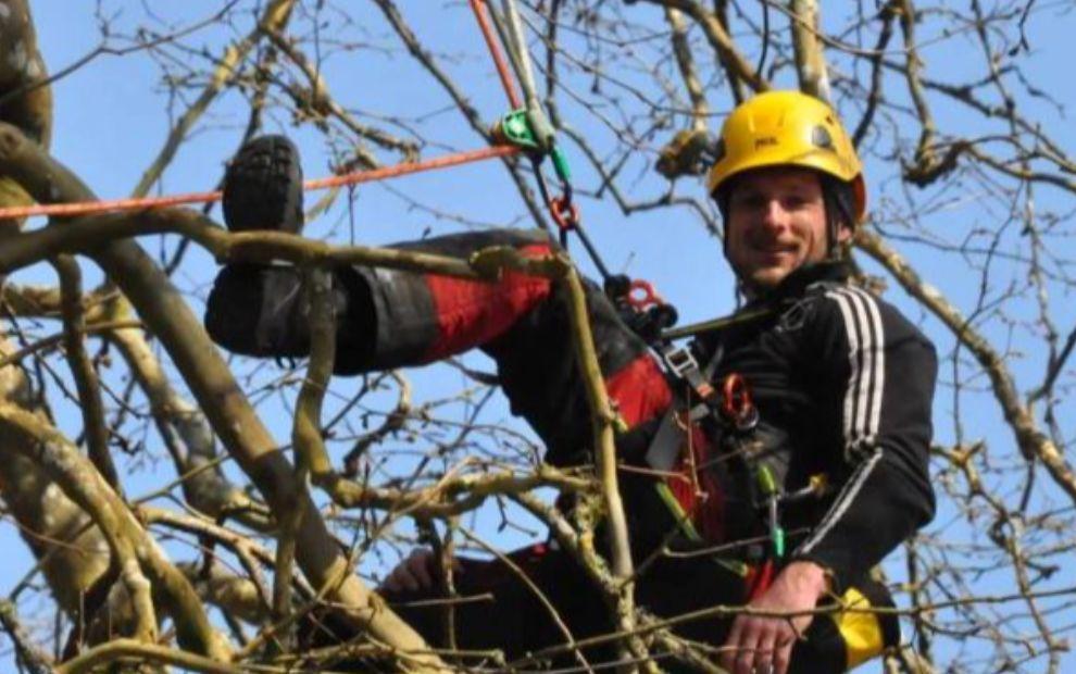 Le Centre de formation du Gros-Chêne les fait grimper dans les arbres
