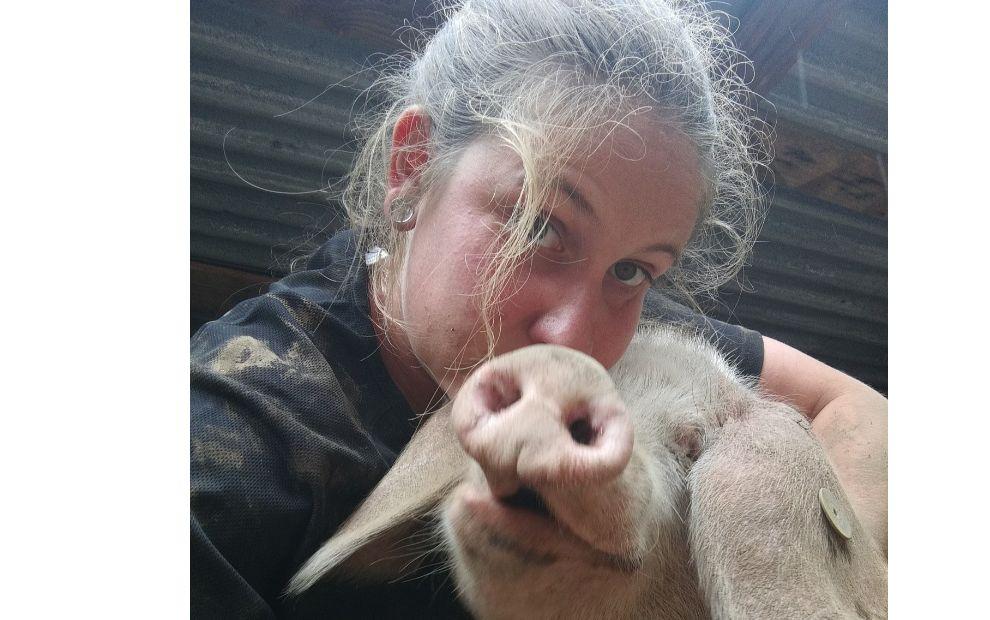 Dans sa ferme à Locqueltas, les cochons sont… blancs !