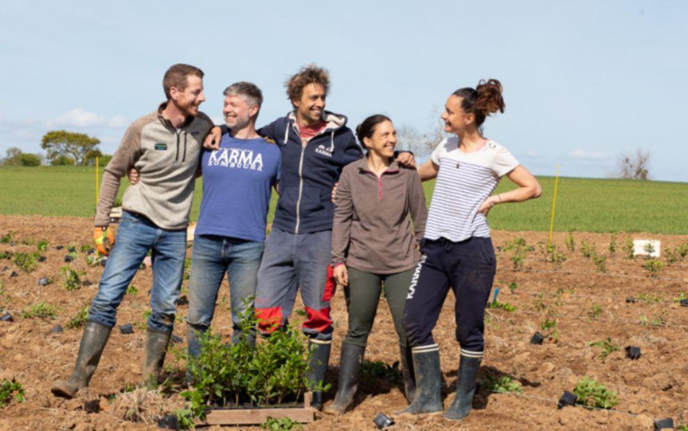 Biogroupe lance ses propres cultures de thé en Bretagne