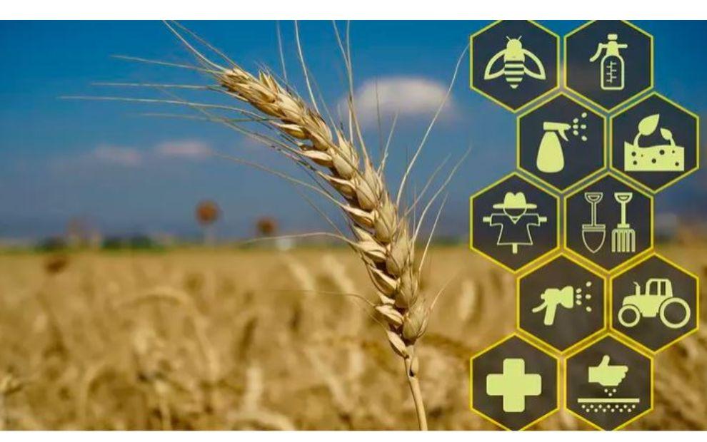 Nouvelles technologies : la data remplacera-t-elle les agriculteurs ?