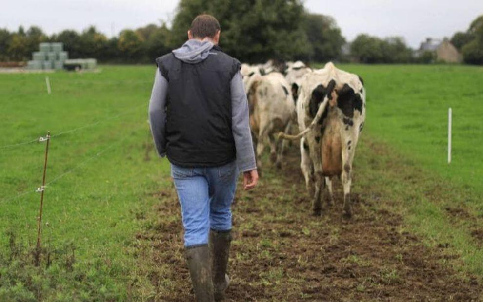Dans le Morbihan, l'agriculture cherche toujours à recruter