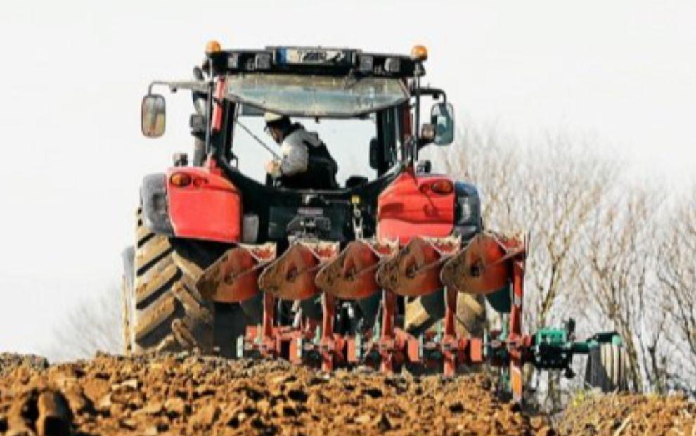 Agriculture : ce que proposent les candidats aux régionales en Bretagne